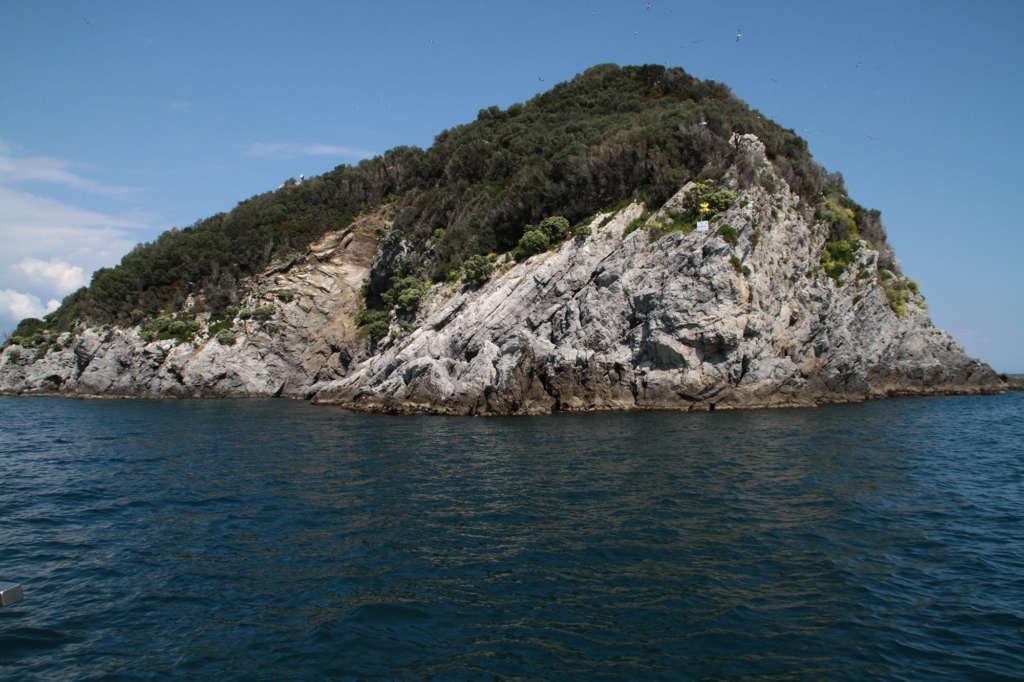 isola di Bergeggi - immersione DivenJoy